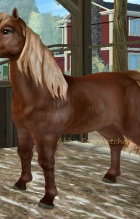 Mein Leben als Pferd.... by StandByeMe