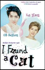 I Found A Cat [HunHan]  by BollitoPoderoso1415