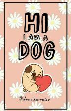 Hi Im A Dog by drukwritter