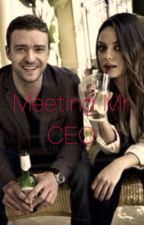 Meeting Mr CEO by zmohammed872