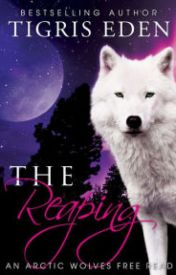 The Reaping by duketgedu