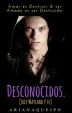 Desconocidos (Jace Wayland y Tu) by Corazondecristal97