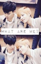 What are we? {vmin} by Btsizfabz