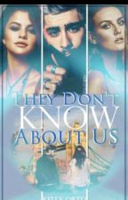 They Don't Know About Us🔷Zaylena (Español) by xXLarry-StylinsonXx