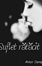 Suflet rătăcit(PAUZĂ) by PulbereDeVise