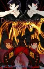 Ninjago || Dwie osobowości (II)  ✏ by ShadowSkylor