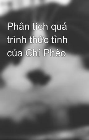 Phân tích quá trình thức tỉnh của Chí Phèo by chjbaby