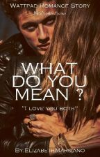 What Do You Mean ?[Completed] by ElizabethMarsiano