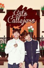 Gato callejero ✄ Vkook by manzana801
