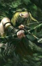 Elemental Assassins by NatureAssassin