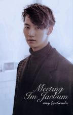 Meeting Im Jaebum (Jaebum x Reader)  by shiruuka
