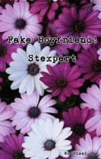 Fake Boyfriend?! Stexpert by Chrissi_Lyy