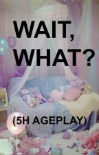 Wait- What? (5H Ageplay) by camren_fantasies