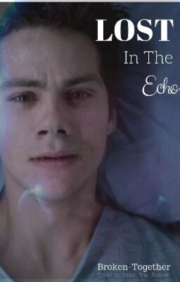 Lost in the Echo (Book 2)