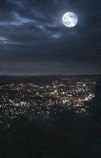 Nuovi arrivi, Beacon Hills  by chiaraDiDonato