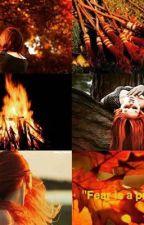 Liebesdrama Harry und Ginny by liebesdrama_ginny