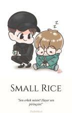 Small Rice(Küçük Pirinç)//ChanBaek  by TheRebBlack