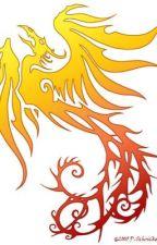 Dragon magic  by cat_writter23