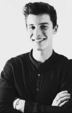 Fakty o Shawnovi Mendesovi +Vtipné Obrázky by TinaLissa