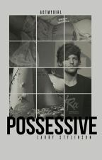 Possessive  by unknownlourry