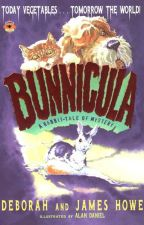 Bunnicula RP by NatalieMowery