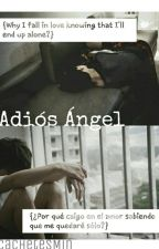 Adiós ángel (One-shot JiKook) by CachetesMin