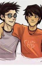 El descendiente de Voldemor:  Percy Jackson y Harry Potter crossover by meral_02