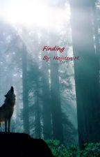 Finding by Skyhay03den