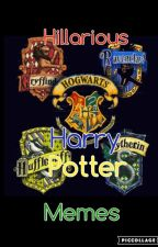 Hillarious Harry Potter memes by Memes4You