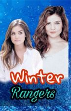 Winter Rangers (Power Rangers Ninja Storm) by mirajanewolf46