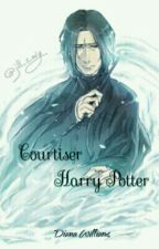 Courtiser Harry Potter by Rosie-Rodwell