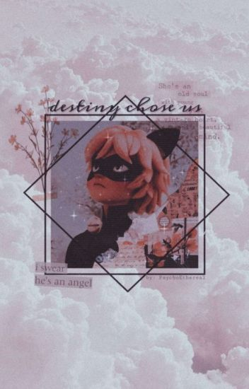 Destiny Chose Us ↠ Adrien Agreste