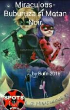 Miraculos-Buburuza si Motan Noir by bufni2016