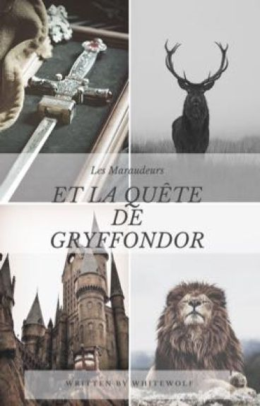 Les Maraudeurs et la quête de Gryffondor TOME 2