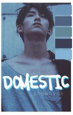 domestic ; showhyuk by _tototooru