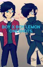 Aphmau Boy X Boy Lemon Oneshots! by LonelyGene
