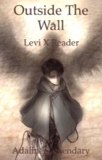 Outside the Wall -Levi X Reader by Dere-ChanFanfics