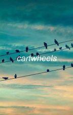 CARTWHEELS || BEX TAYLOR-KLAUS by rileysblues