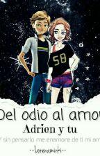 Del Odio Al Amor (Chat Noir/Adrien Y Tu) by lorenaminki