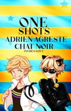 One Shoots Chat Noir/Adrien Agreste y Tú by Crazy_killer21