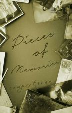 Pieces of Memories by citracchi