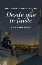Desde Que Te Fuiste™ (Miraculous Ladybug One-shot) by KamieShiro