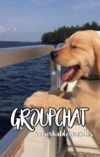 groupchat | mendes by somerhaldermendes