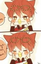 """Our Princess."" *Mystic Messenger x Reader* One-shots by Kiiyarx"