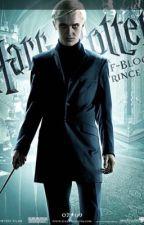 Harry Potter x reader Préférences et imagines (FR) by emybailey