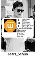 EXO et Wattpad  by Tears_Sehun