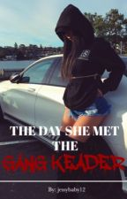 The Day She Met The Gang Leader  [ #Wattys2016 ] [ON HOLD] by trippindolls