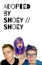 Adopted by Shoey // Shoey by emmeraldsmith