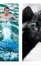 The wolf and the merman by ToaWhitelaw