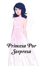 Princesa Por Sorpresa  ( Adrinette ) by MirandaMiranda450